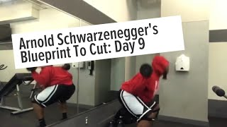 ARNOLD BLUEPRINT TO CUT | LEG ROUTINE | 4AM FITNESS | FAT TO FAB