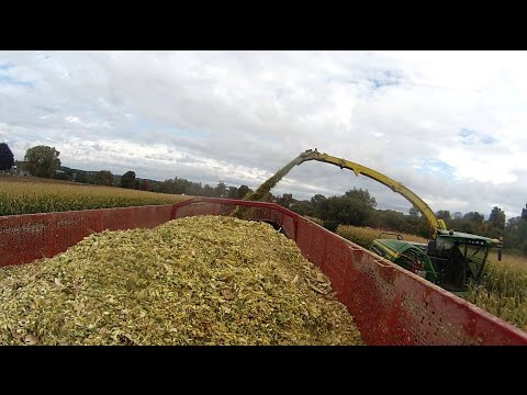 Load of Silage on the W900 Field to Farm