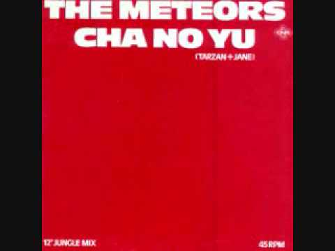"DISC SPOTLIGHT: ""Cha No Yu (Tarzan + Jane)"" by The Meteors (1982)"