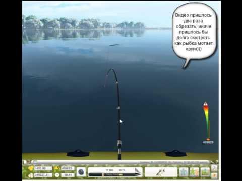 поймал пиу схема турниров в трофейной рыбалке фото