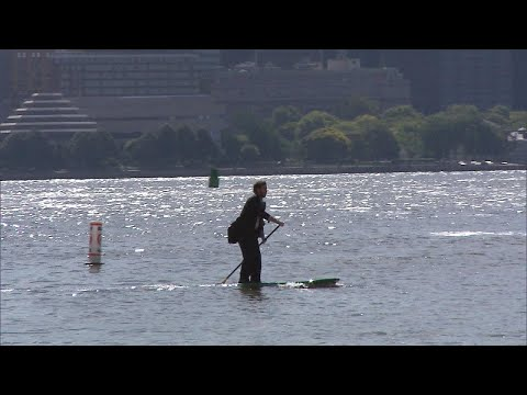 Man in Suit Paddleboards Across River to Make NYC Work Meeting on Time