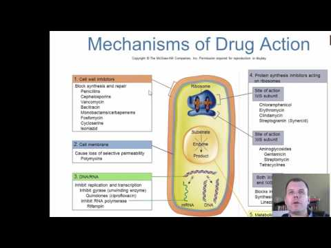 Chapter 12 - Antimicrobial Therapy