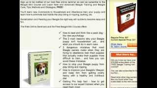 **How To Potty Train Beagle Puppies NOT To Pee & Poo - Free Course HERE***