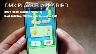 DMX Plays Flappy Bird! Stupid Crazy Simple Frustrating Most Addictive FREE Game!