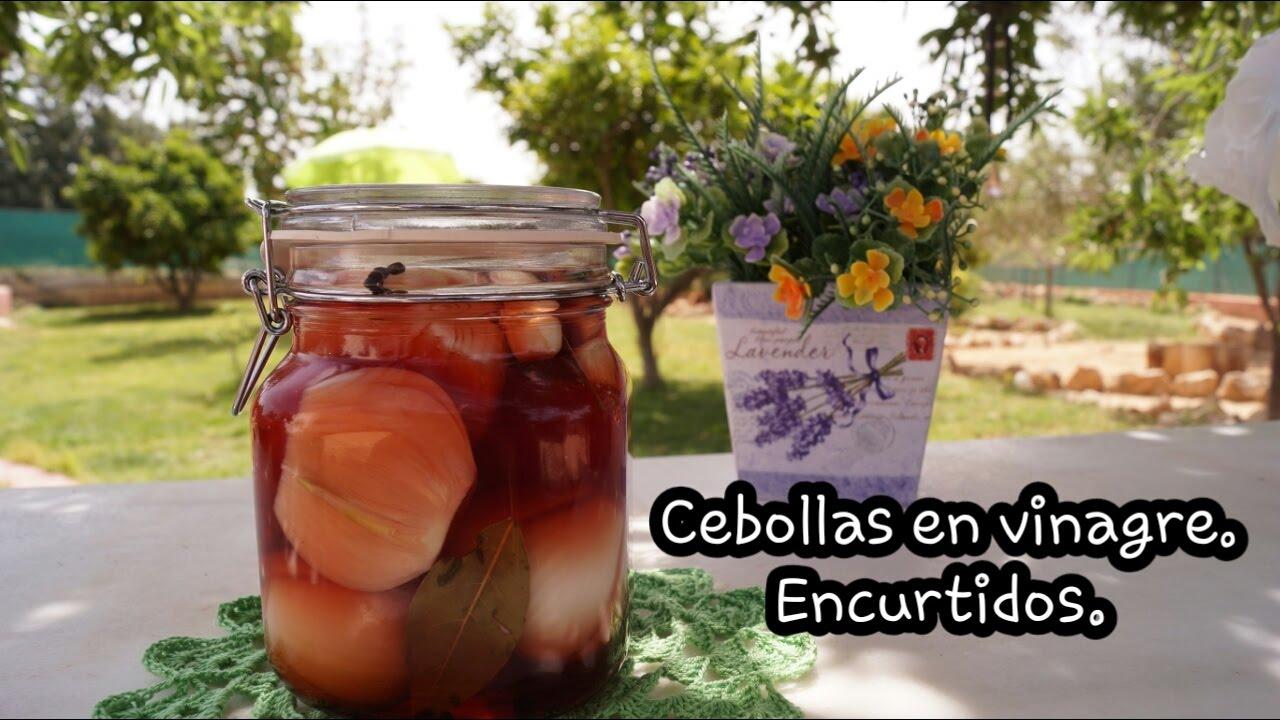 Cebollas Encurtidas Cebollas En Vinagre Youtube