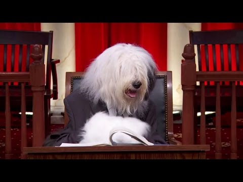 Simmons v. Himmelreich: Oral Argument - March 22, 2016