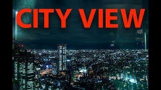 GRAD ZIVI 24 SATA - TOKYO VLOG 4.DAN