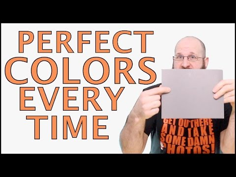 White Balance Card - The Secret To Perfect Colors In Your Photos