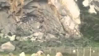 بالفيديو.. عرض زواج رومانسي ينتهي بشاب معلقًا على صخرة