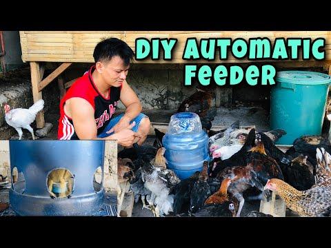 DIY AUTOMATIC FEEDER