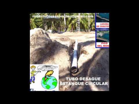 Tanques de geomembrana para tilapia tangeomex doovi for Construccion de estanques circulares para tilapia