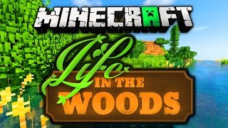 Minecraft Life In The Woods installieren (mit Shader)