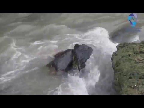 Audio terapi suara air untuk masteran burung berkicau #1