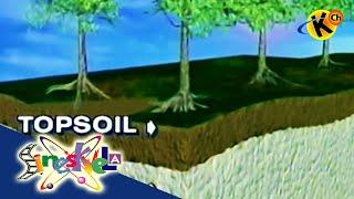Soil Erosion | Sineskwela