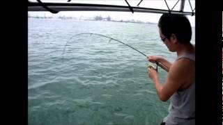 Fishing in Singapore - 钓鱼8
