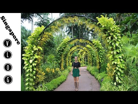 Singapore VLOG 2 / Gardens by the Bay/Jela sam žabu?/met Chriselle Lim