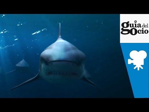 Deep Blue Sea 2 ( Deep Blue Sea 2 ) - Full online español