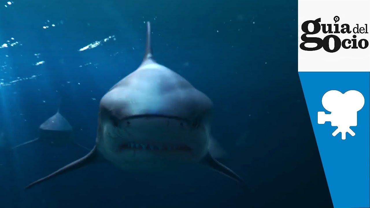 Deep Blue Sea 2 Trailer Deutsch