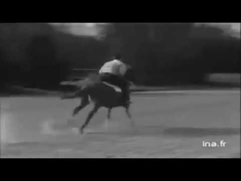 Aga Khan Racing