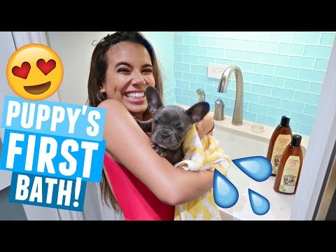 PUPPY'S FIRST BATH!! (She hated me)