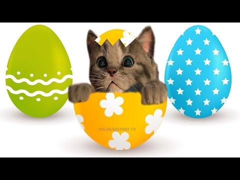 Маленький котенок -  играем с котиком и рисуем пасхальные цветные яйца