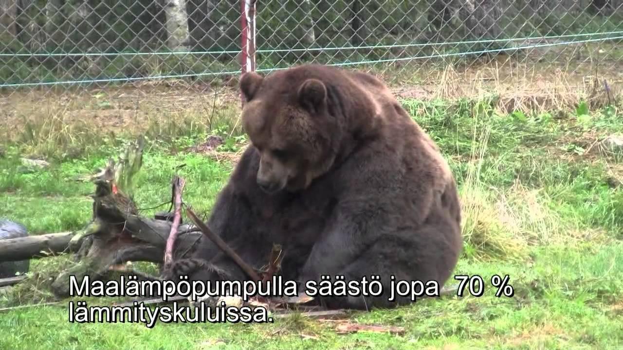 Juuso Karhu
