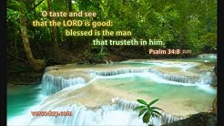 Fakalotu - Saame 34:8 (tukupa)