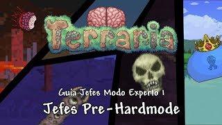 Guía Jefes Expertos 1: Jefes Pre-Hardmode - Terraria 1.3