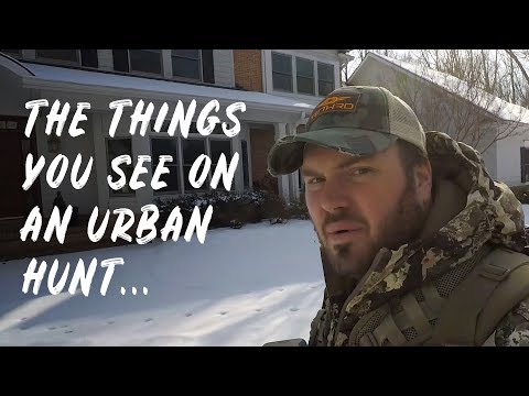 Ferrari's From The Treestand??!! Just Another Urban Hunt!