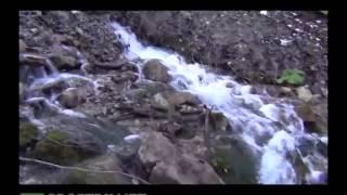 видео река Аргун