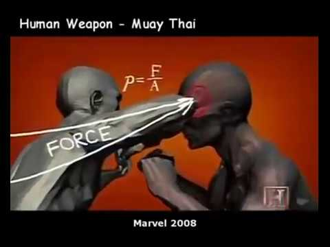 Human Weapon All In One