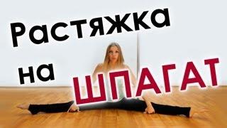 Шпагат от Галины Харыбиной #3 (растяжка упражнения)