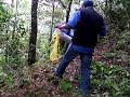 Video de Tehuipango