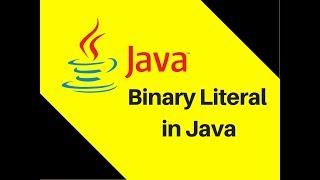 4.4 Binary Literal in Java