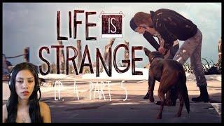 CHLOE SHOT HIM! - LIFE IS STRANGE - Ep 4 - Part 5