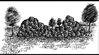 Learn to Draw Landscapes in Pen and Ink :Demo 46