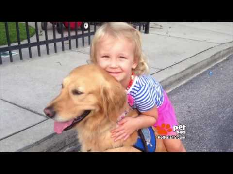 Comfort Dogs Provide Hope After Orlando Shootings