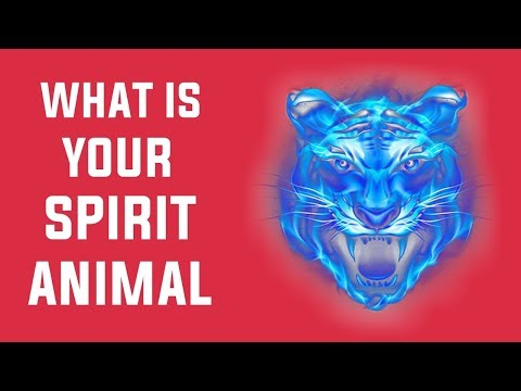 What is Your Spirit Animal ? Personality Test