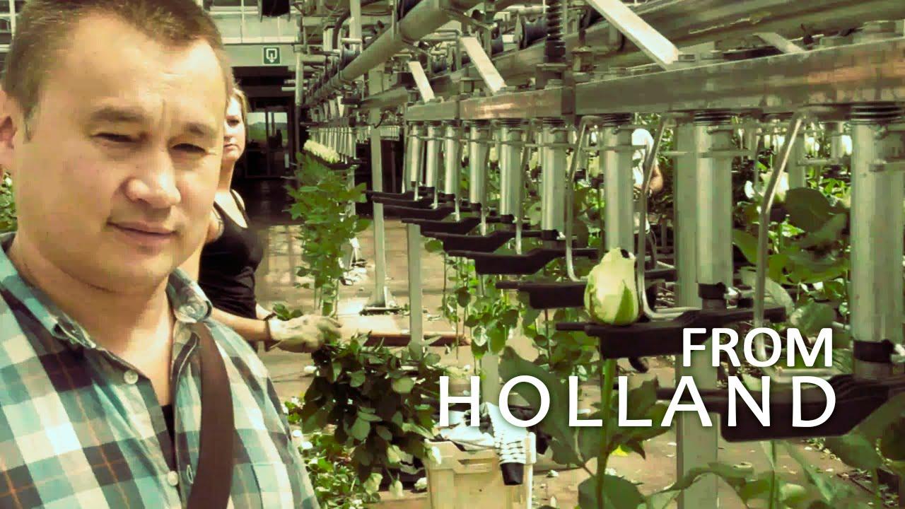 Промышленная теплица Фермер от компании Воля - YouTube