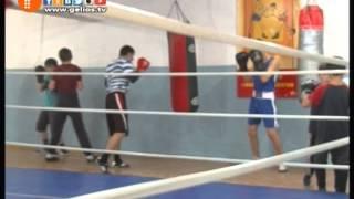 видео бокс спортивная школа