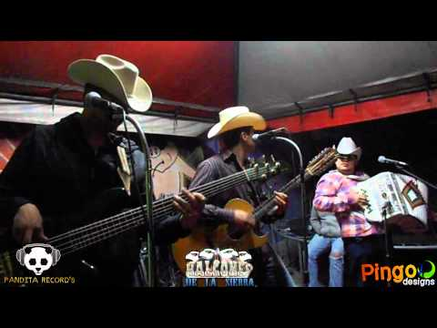 Los Halcones De La Sierra - Kilometro 1160 En Vivo 2012