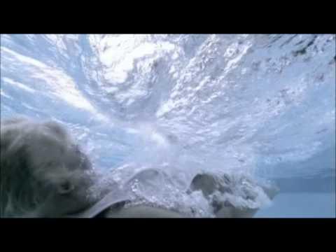 Bjorn Again - Girls on film