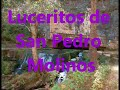 Video de San Pedro Molinos