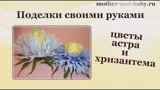 Поделки своими руками - цветы: астра и хризантема
