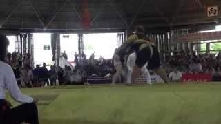 Чемпионат мира по Сумо 2015 г.Осака,Япония. (Жигалова RUS vs MNG)