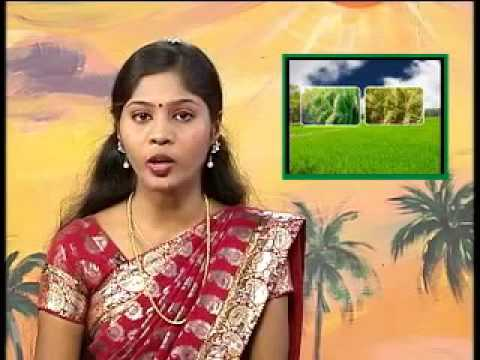 Pon Vilaiyum Bhoomi 7/03/2013