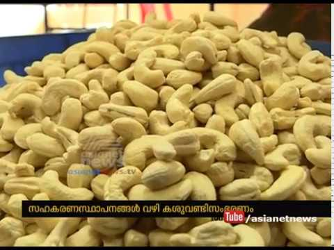 Will collect cashew nut through cooperative institution