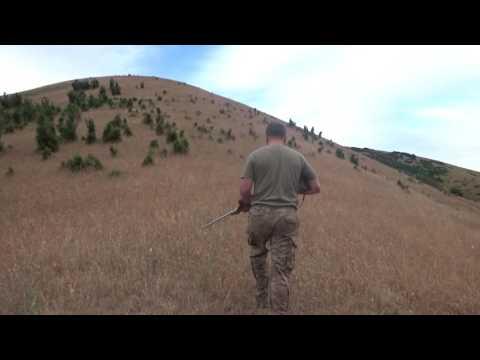 North California Wild Pig Hunt: Rogue River Ranch