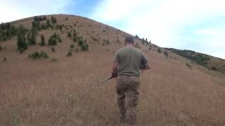 North California Wild Pig Hunt: Rogue River Ranch