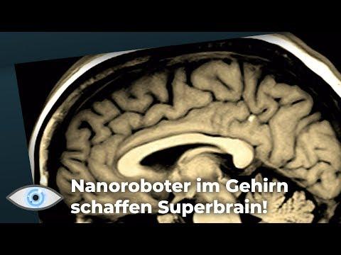 Werden unsere Gehirne